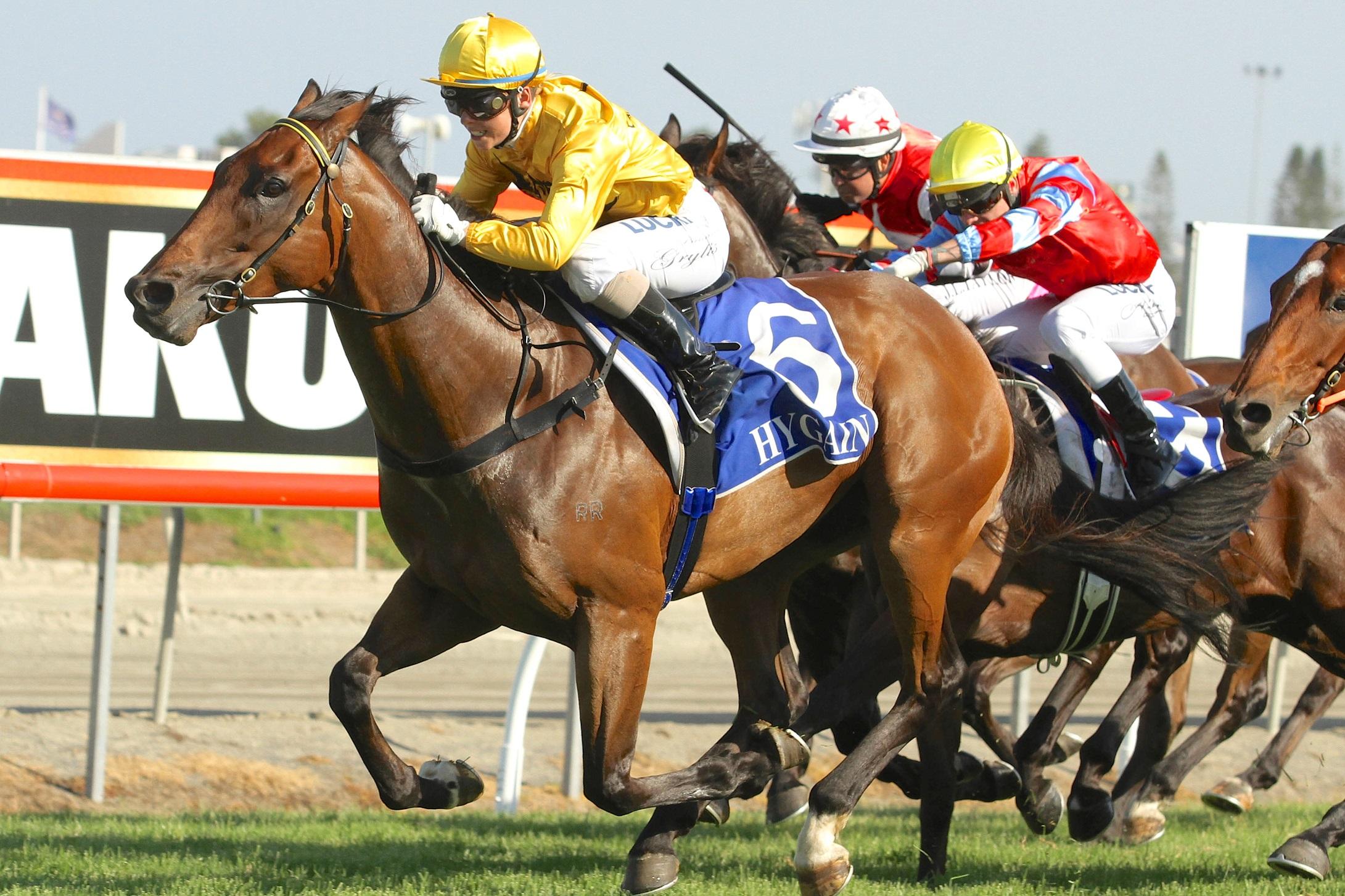 At Yarışı Bahis Siteleri